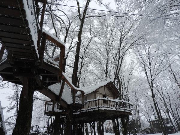 追記あり:今シーズン1の降雪!交通情報要確認!!(2020年3月29日)_b0174425_09124375.jpg