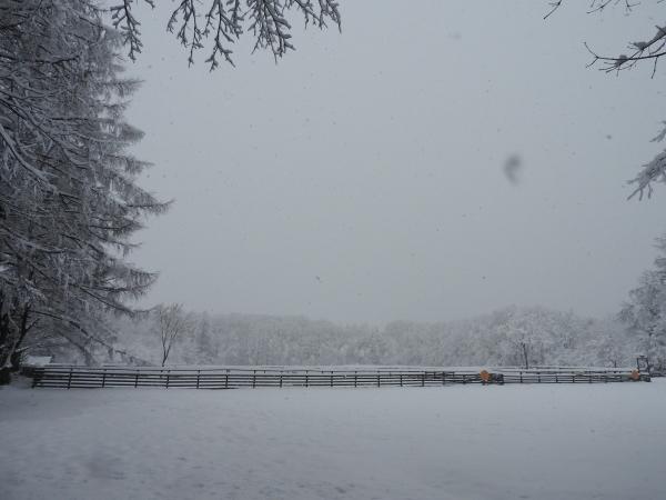 追記あり:今シーズン1の降雪!交通情報要確認!!(2020年3月29日)_b0174425_09125141.jpg