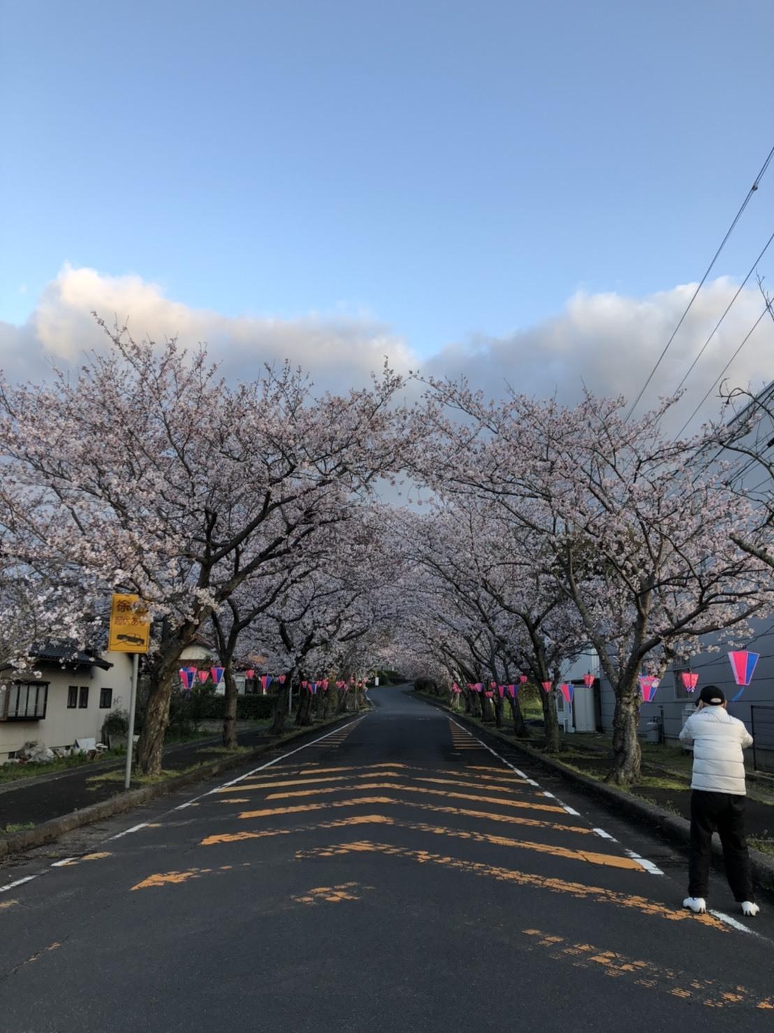 東京の空と島根の空_c0124528_15075739.jpg