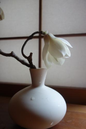 桜の季節に…_a0197730_01171559.jpeg