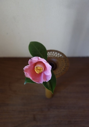 桜の季節に…_a0197730_01174669.jpeg