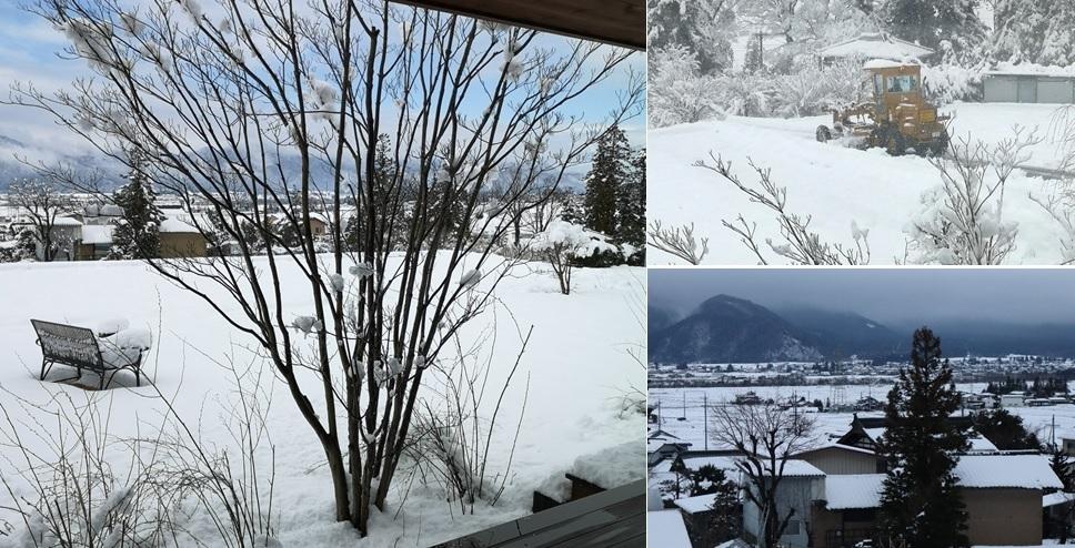 雪、積もりました_a0212730_18225072.jpg