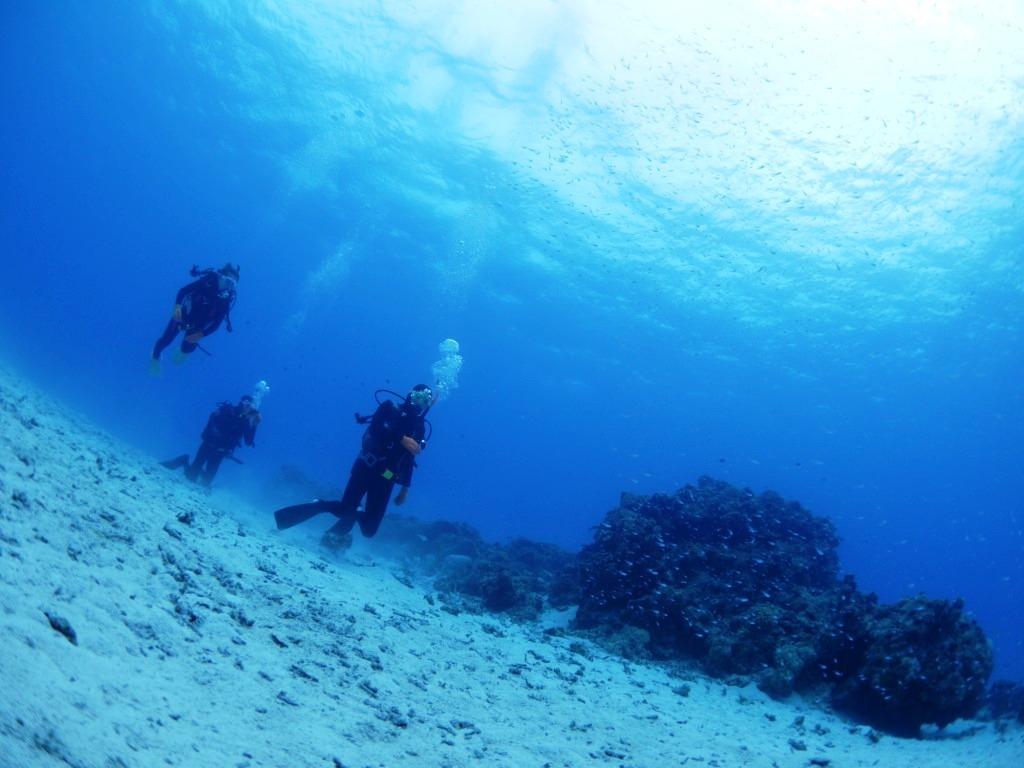 スパーブルーな海へ(^_-)-☆_a0189838_13444236.jpg