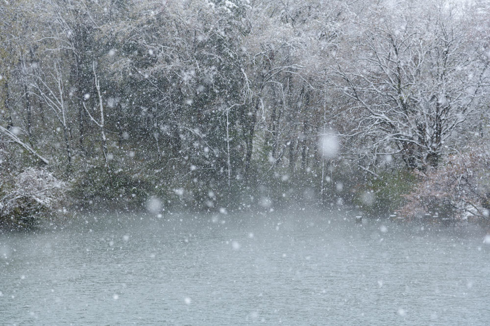 雪_b0036743_18020053.jpg