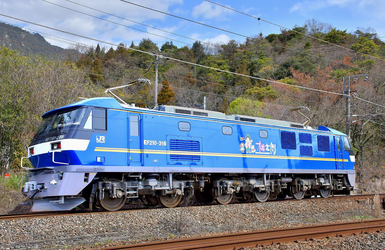 EF210-316運用入り_a0251146_19470173.jpg
