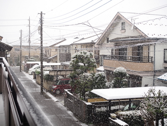 雪、雪、、、_d0317548_08372526.jpg