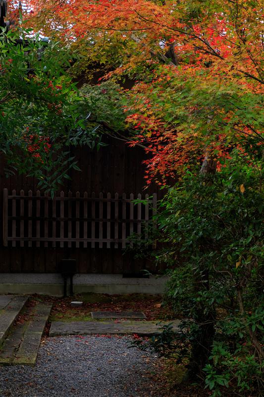 紅葉が彩る京都2019 もみじ寺・善法律寺_f0155048_23535028.jpg