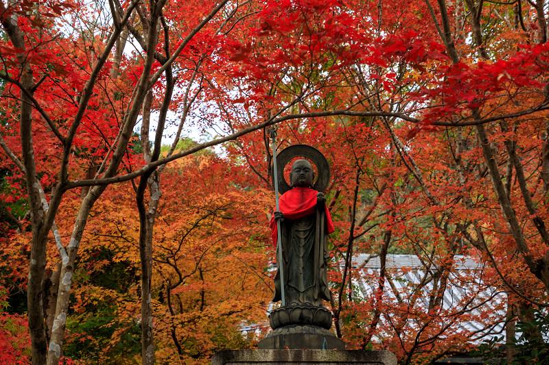 紅葉が彩る京都2019 もみじ寺・善法律寺_f0155048_23535535.jpg
