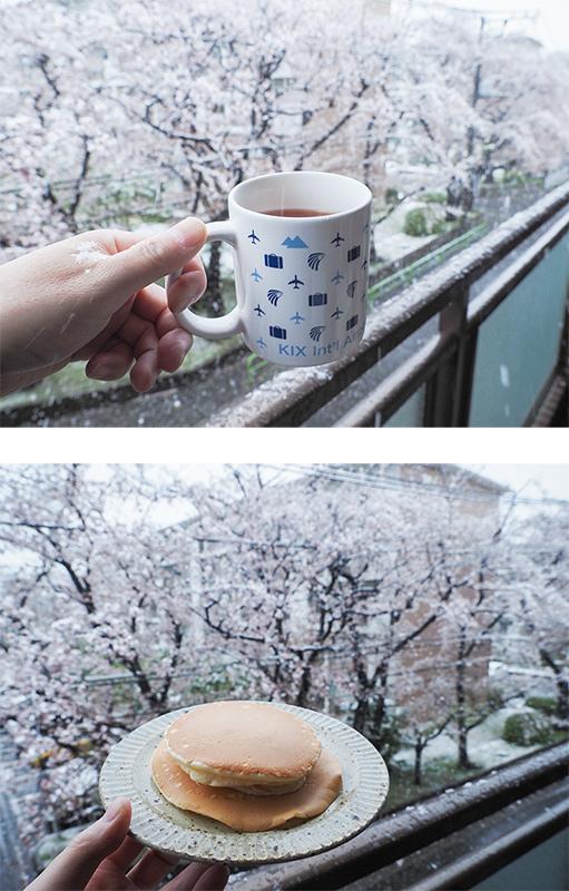 桜と雪_a0003650_22185045.jpg