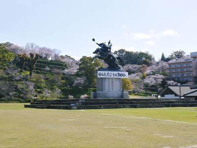 菊池公園、菊池神社の桜photoコレクション 2020_a0254656_18544165.jpg