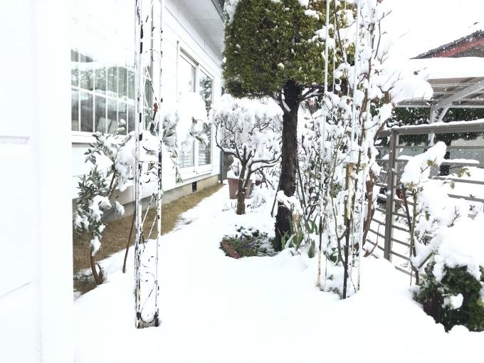 大雪_f0303858_09233922.jpeg