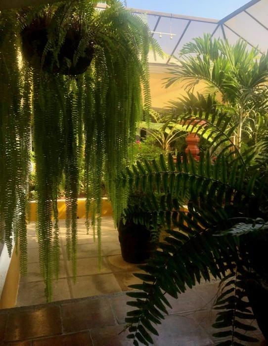 アンティグアのホテル Soleil La Antigua @グアテマラ_a0092659_09583327.jpeg
