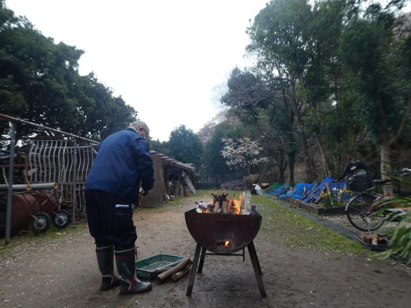 炭竃跡周辺とダム周辺の整備・・・うみべの森_c0108460_17350535.jpg