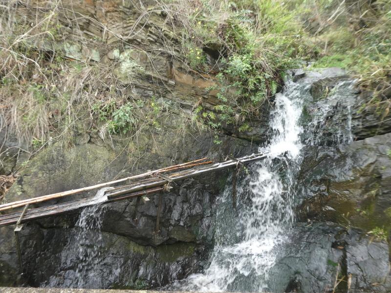 炭竃跡周辺とダム周辺の整備・・・うみべの森_c0108460_17350639.jpg