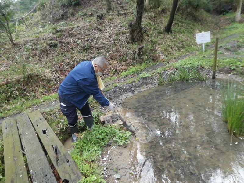 炭竃跡周辺とダム周辺の整備・・・うみべの森_c0108460_17364036.jpg