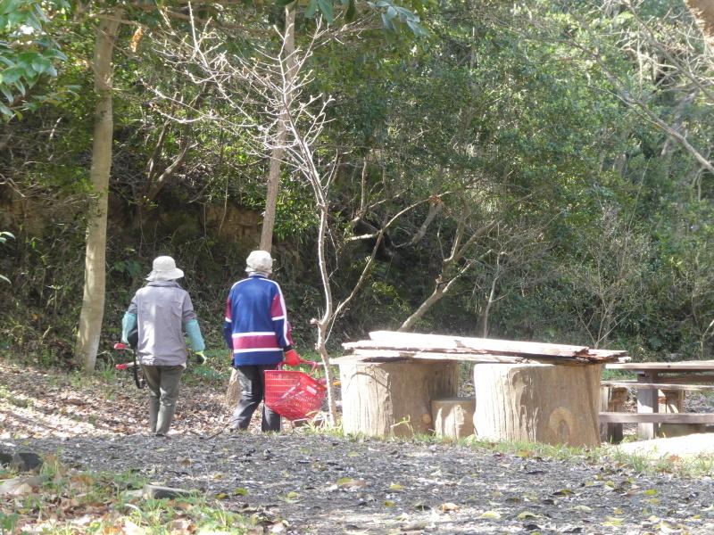 炭竃跡周辺とダム周辺の整備・・・うみべの森_c0108460_17411164.jpg