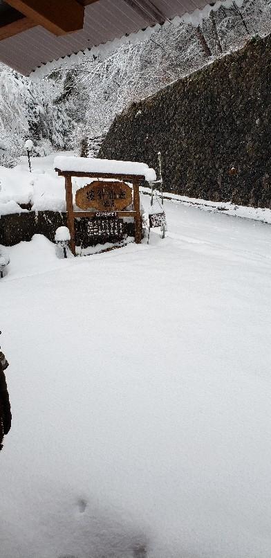 今年一番の大雪そして..._b0222066_07124482.jpg
