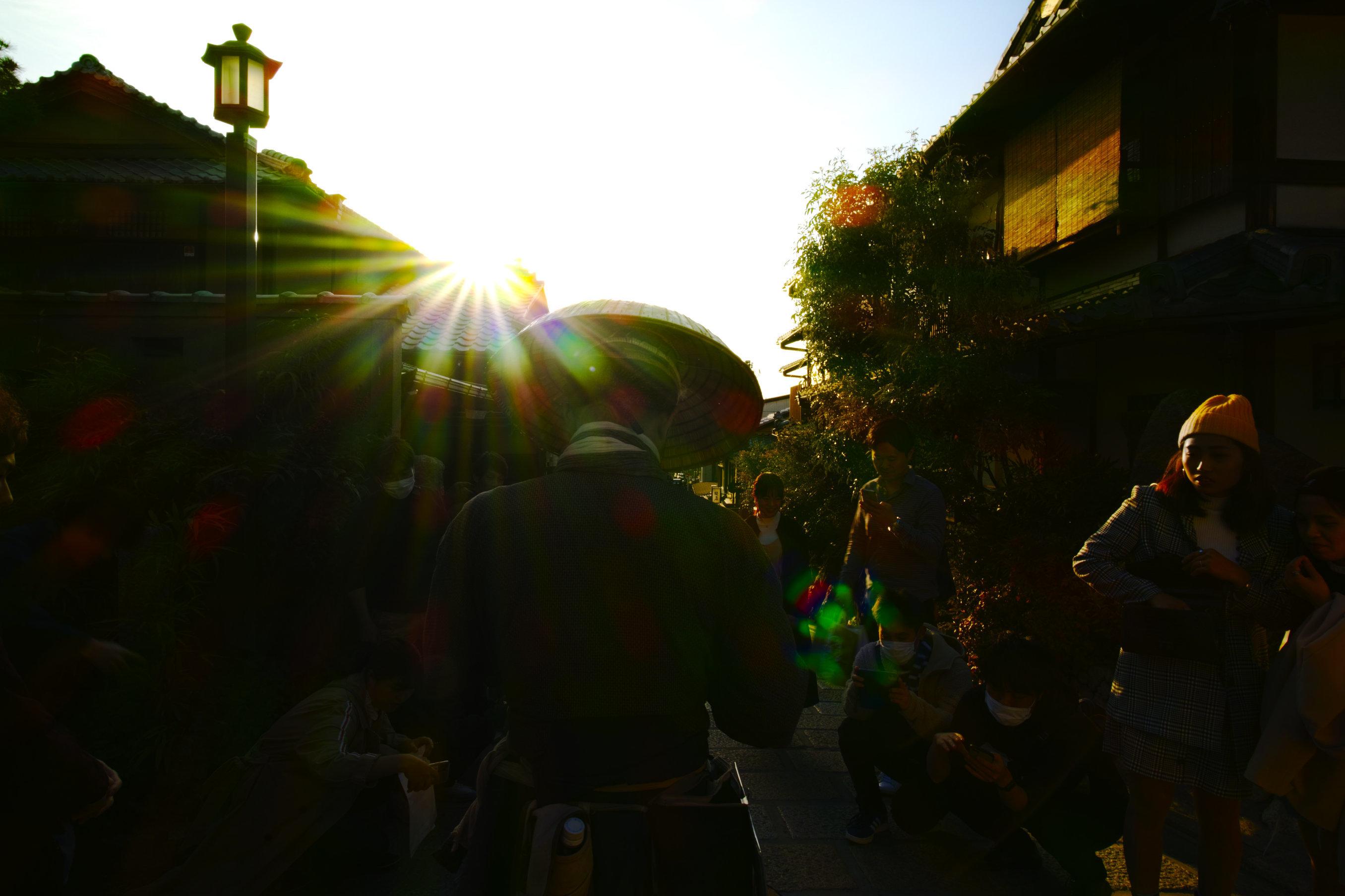 桜 2020_f0021869_21414060.jpg