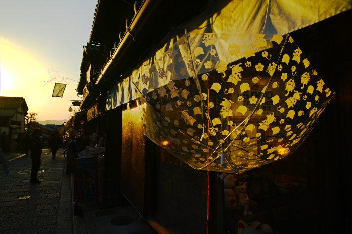 桜 2020_f0021869_21414116.jpg
