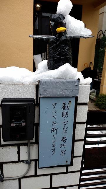 季節外れの降雪_d0019074_14540162.jpg