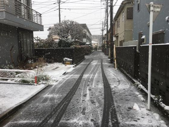 東京、雪!_b0232876_10413566.jpg