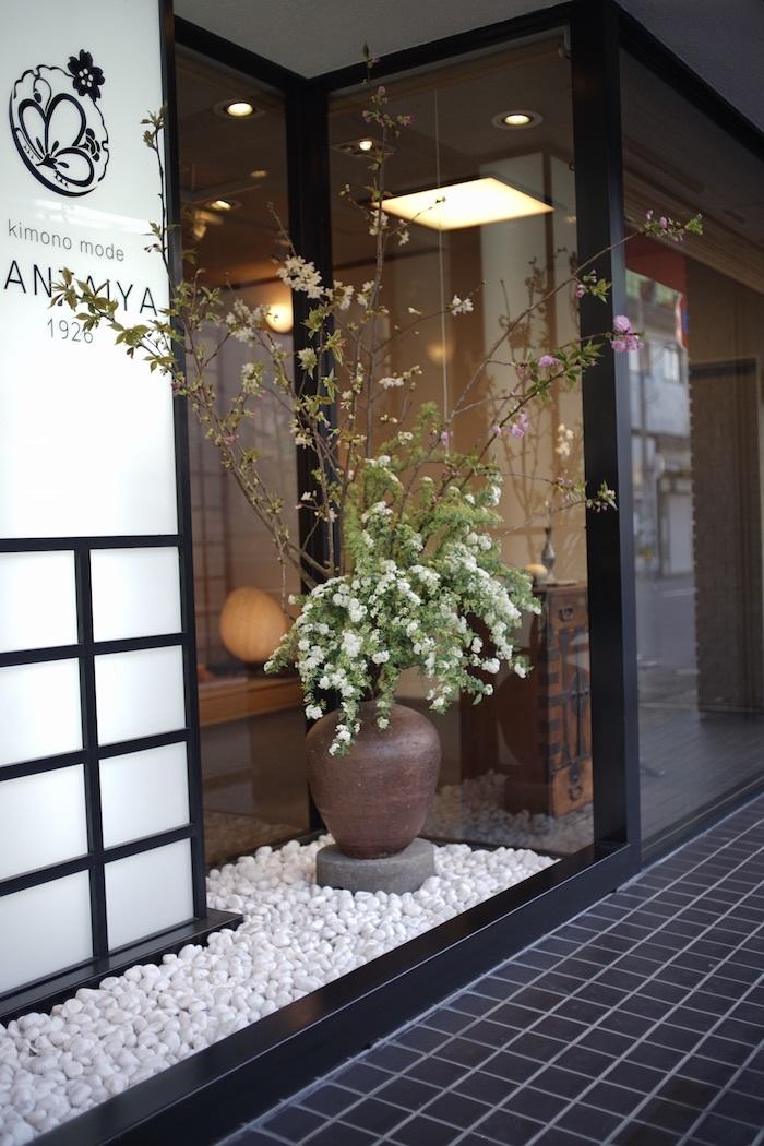 ソメイヨシノと牡丹桜_d0335577_17365977.jpeg