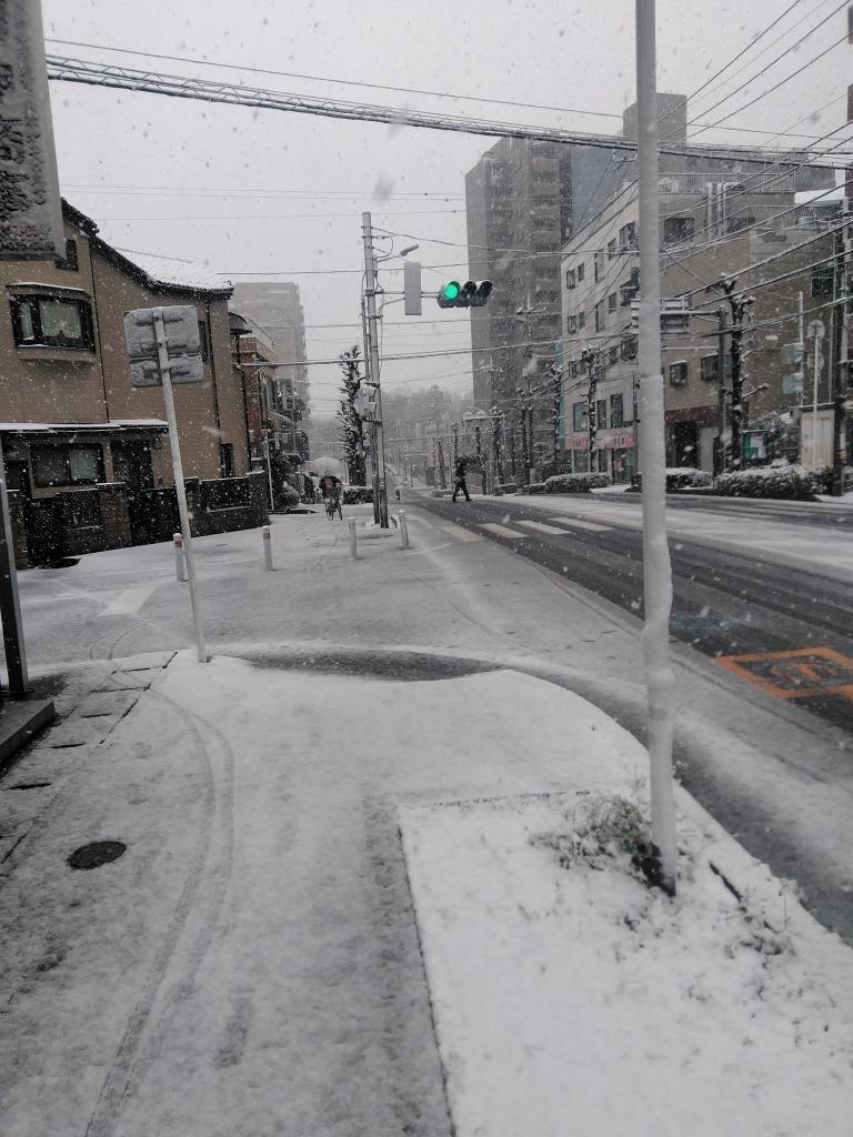 雪!!志木&朝霞_d0061678_10224917.jpg