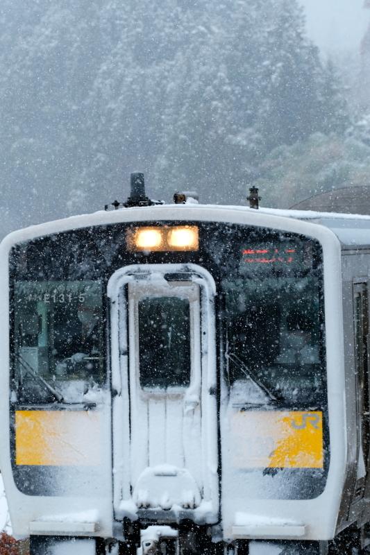 雪化粧!! 矢祭町「戸津辺の桜」&水郡線 <1> 2020・03・29_e0143883_14580768.jpg