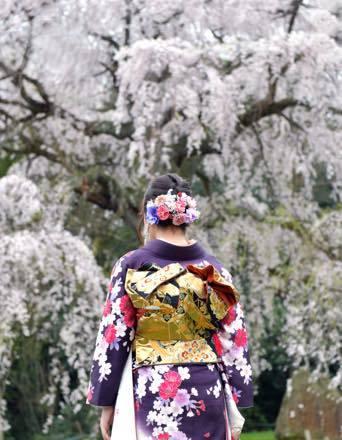満開の桜だったけど行ったところは全て人の姿は......._b0194185_17023271.jpg
