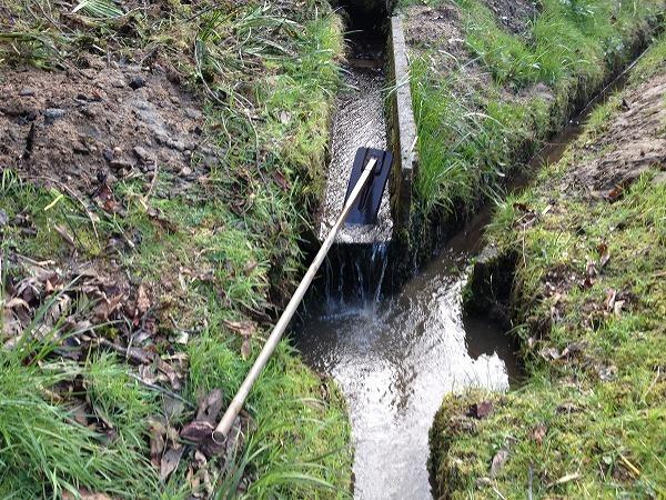 水路の掃除とシイタケ_e0052385_19444964.jpg