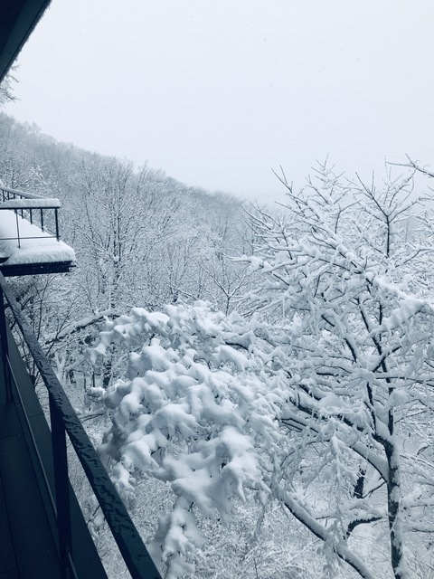 雪景色が似合う軽井沢_d0339896_12024381.jpeg