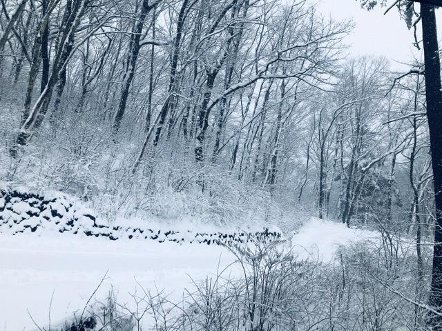雪景色が似合う軽井沢_d0339896_20181358.jpeg