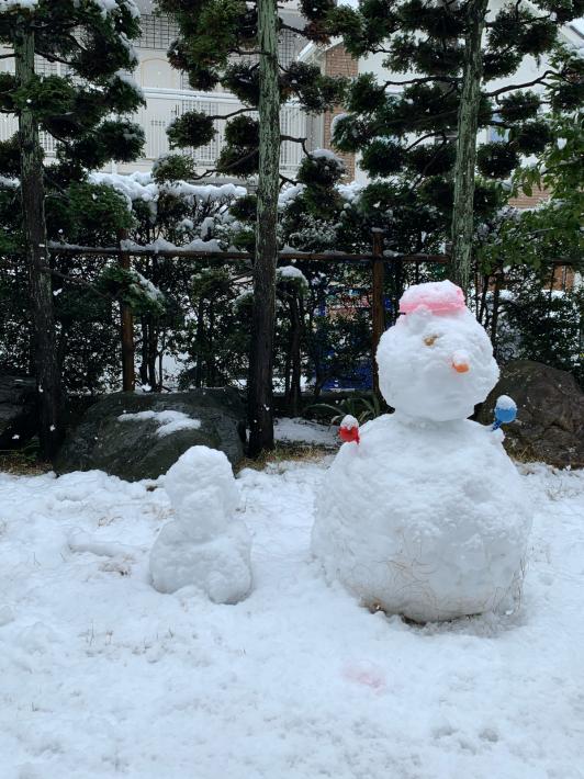 昨日は桜満開、今日は大雪警報☆_a0063997_16202151.jpg