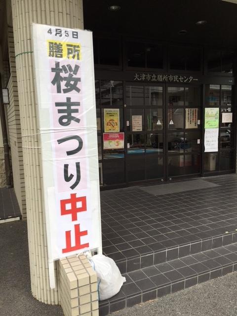 桜祭り_e0150006_14540624.jpg