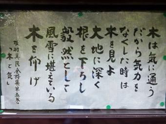 円覚寺の桜_c0195909_14135059.jpg