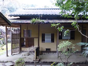 円覚寺の桜_c0195909_14144721.jpg