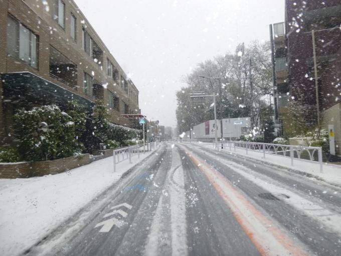 ほんとに雪が降った_e0215910_16032627.jpg