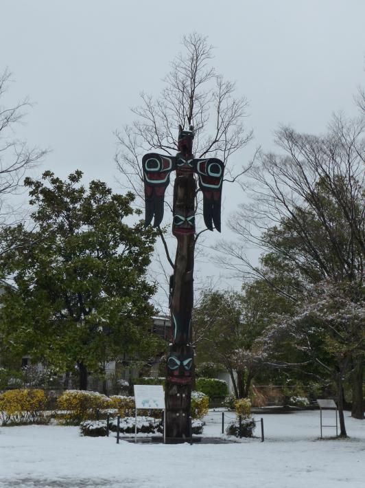 桜と雪の岩槻城址公園_f0296312_00265732.jpg