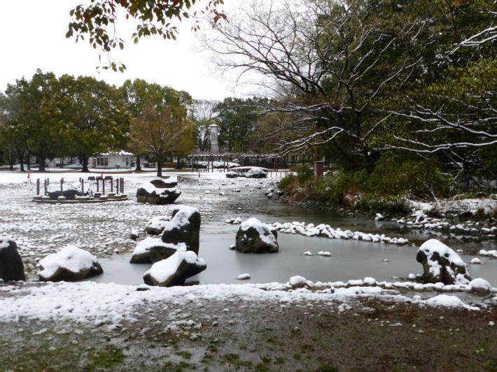 桜と雪の岩槻城址公園_f0296312_00343329.jpg