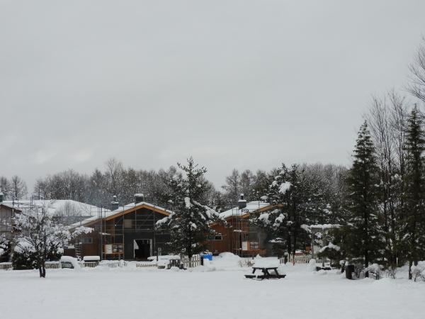 追記あり:今シーズン1の降雪!交通情報要確認!!(2020年3月29日)_b0174425_20542314.jpg