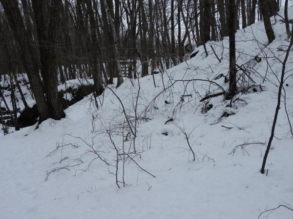 追記あり:今シーズン1の降雪!交通情報要確認!!(2020年3月29日)_b0174425_20593503.jpg