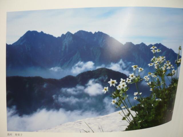素敵な芸術家さん(^_-)-☆_e0195325_18100609.jpg
