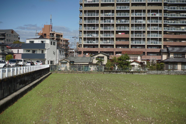 ペトリ CC Auto 55mmF1.8 で 旭ヶ丘を散歩_b0069128_20570913.jpg