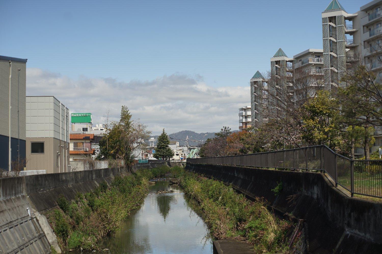 ペトリ CC Auto 55mmF1.8 で 旭ヶ丘を散歩_b0069128_20580130.jpg