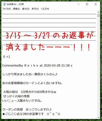 きゃー!_c0062832_15352501.jpg