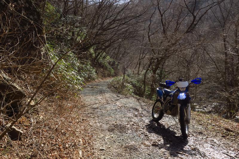 春のいわき林道ツーリング (WR250F)_f0126932_20401899.jpg