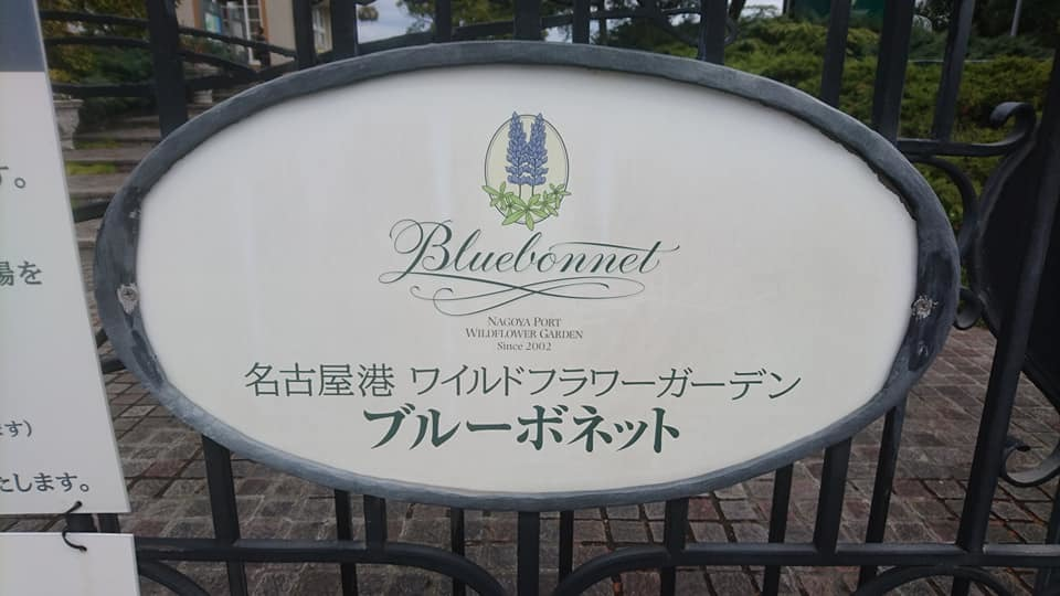 ブルーボネットへ行ってきました♪_f0373339_14154322.jpg