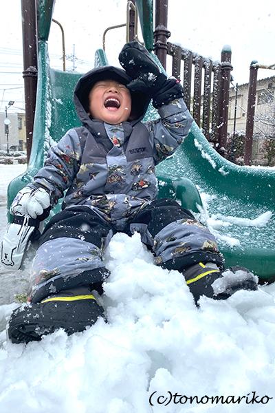 1日だけの大雪で、桜と雪のコラボレーション_c0024345_12320793.jpg