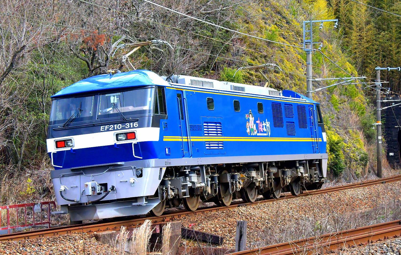 EF210-316運用入り_a0251146_19315710.jpg