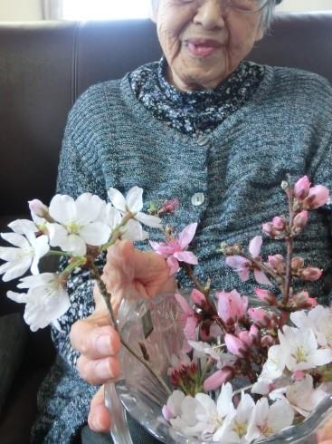 お花見!_d0178056_20132273.jpg